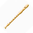 купить в Москве Блок-флейта С-SOPRANO HOHNER B9516